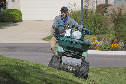home lawn maintenance
