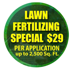 Lawn-Fertilizing-Special-Offer